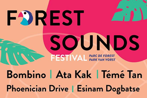 Forest Sounds - Article Banner